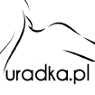 INSIGHT Medium Hold Ecospray lakier do włosów 250ml