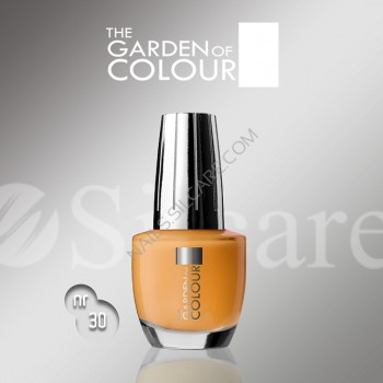 SILCARE LAKIER THE GARDEN OF COLOUR 15 ML NR 030