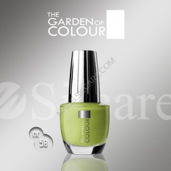 SILCARE LAKIER THE GARDEN OF COLOUR 15 ML NR 058