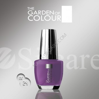 SILCARE LAKIER THE GARDEN OF COLOUR 15 ML NR 024